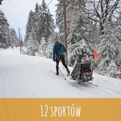 12 sportów