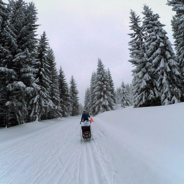 Trasa do schroniska Orle to trasa turystyczna, na ogół jest dobrze przygotowana. Zobaczcie ile śniegu jest obok drogi.