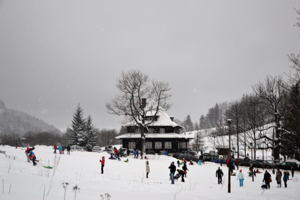 Zbieraj się, Górka przy Andrzejówce to doskonałe miejsce do jazdy na sankach. Obok zaczynają się piesze szlaki turystyczne i szlaki nart biegowych.