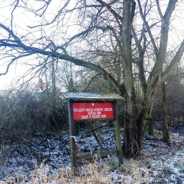 Specjalny Obszar Ochrony Natura 2000 Grądy wDolnie Odry