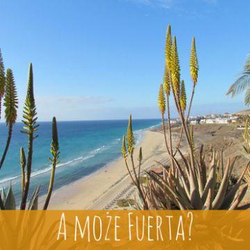 Fuerteventura – dom z widokiem na Atlantyk
