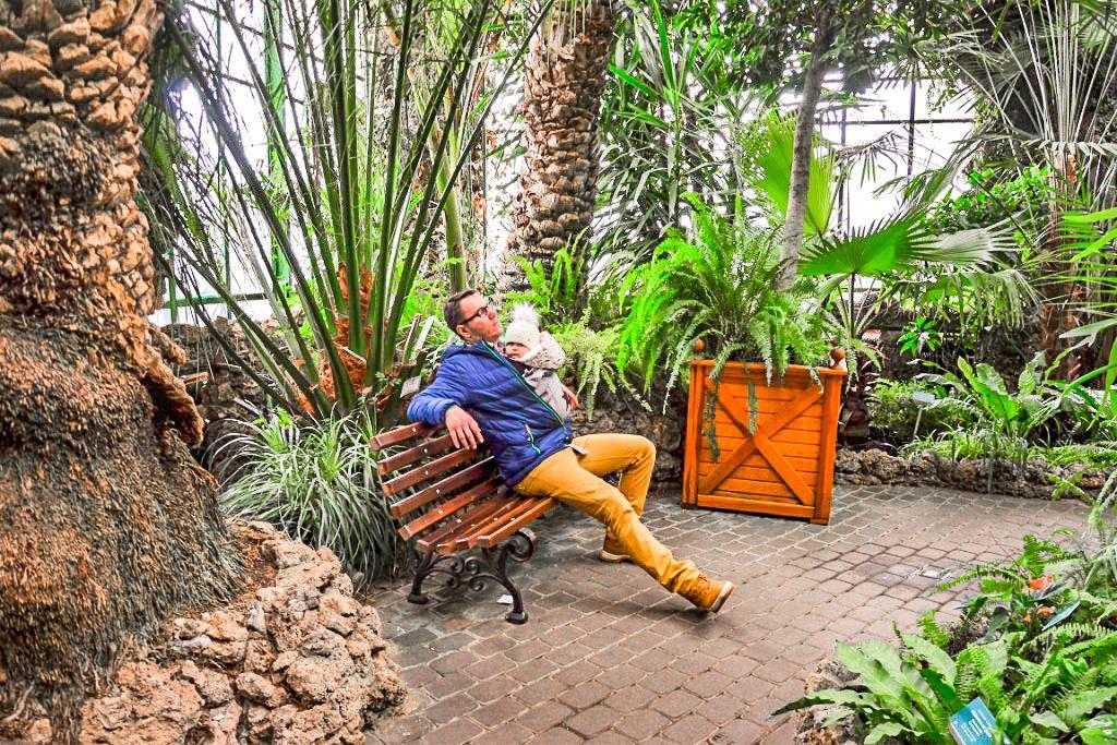 ławka w palmiarni w Wałbrzychu