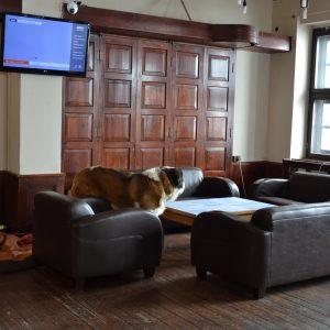 Bufet i pies strażnik (był większy niż Sara)