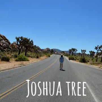 Park Narodowy Joshua Tree i droga przez pustynię