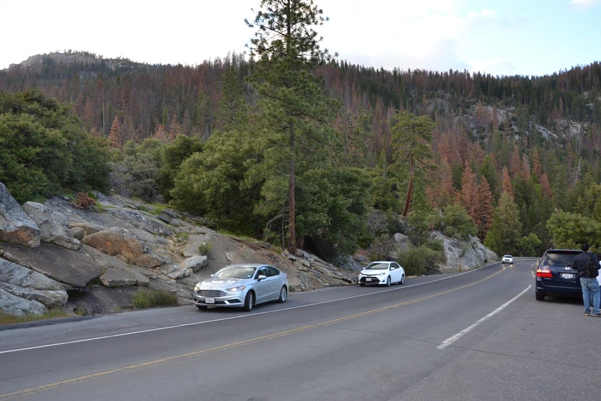 park yosemite, zbierajsie.pl dolina Yosemite Valley auto
