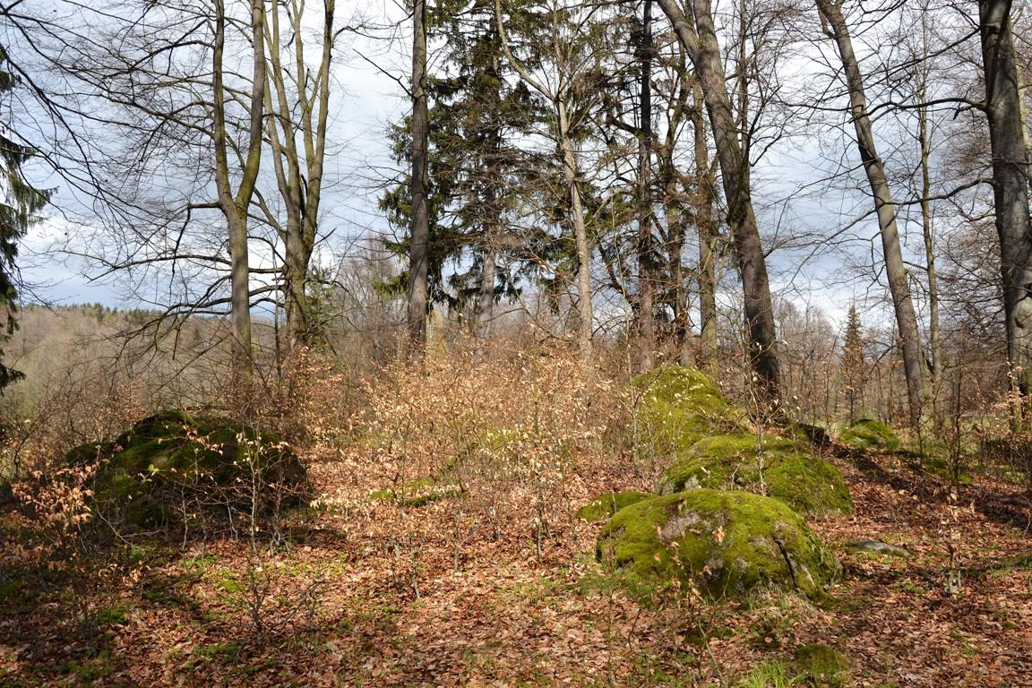 Park-krajobrazowy-w-bukowcu-swiatynia-ateny-zbierajsie (2)