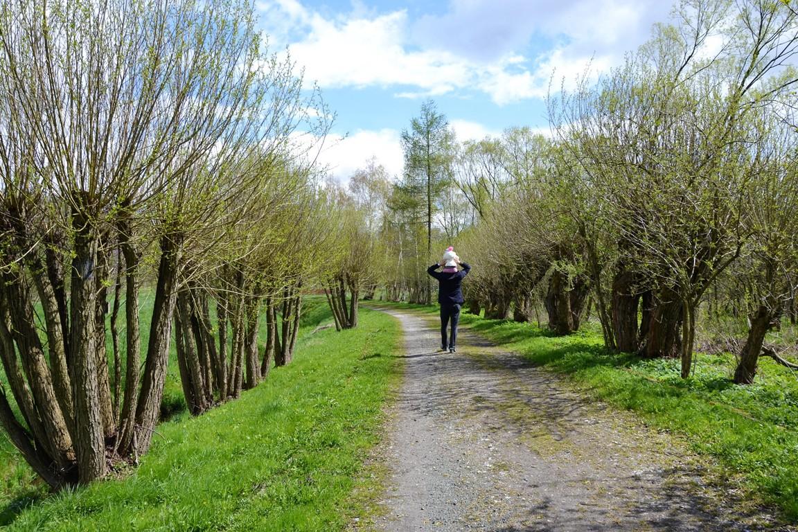 Park-krajobrazowy-w-bukowcu-swiatynia-ateny-zbierajsie (32)