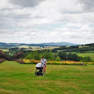 Arboretum w Wojsławicach – spacer z dzieckiem w ogrodzie jak z bajki!