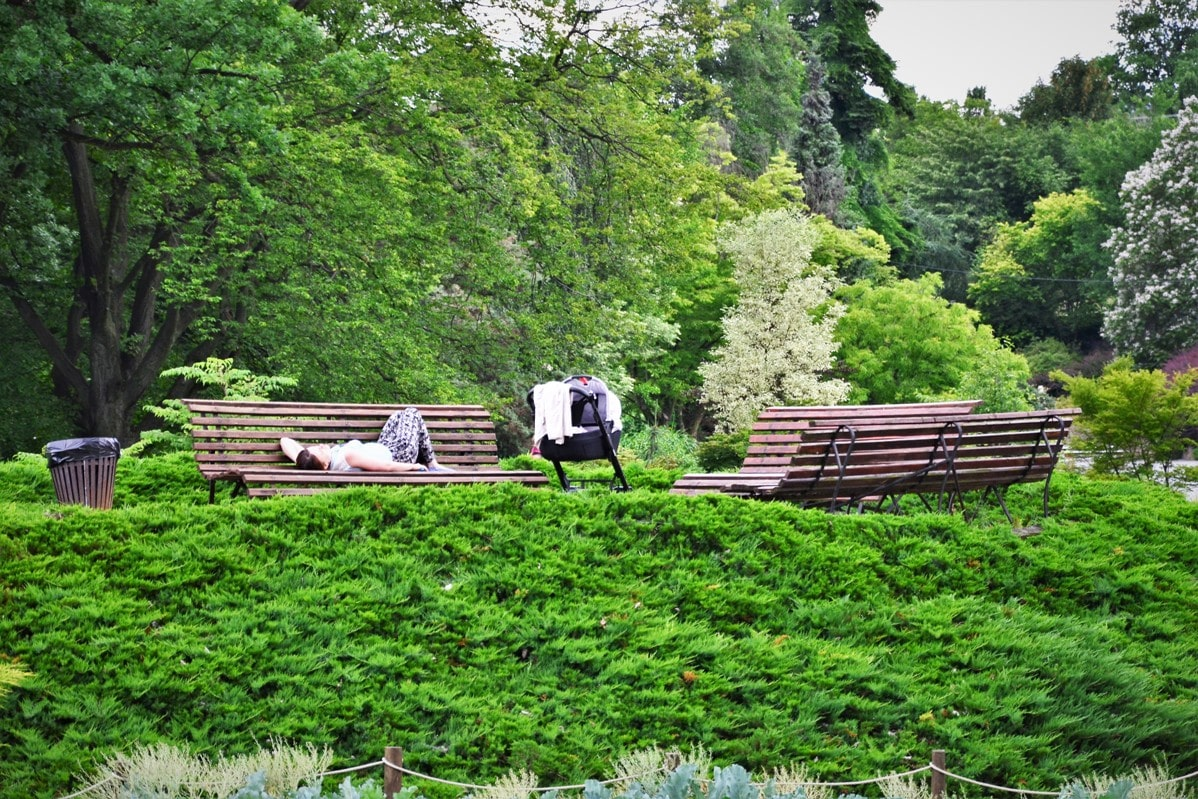 arboretum-w-wojslawice-zbierajsie (25)