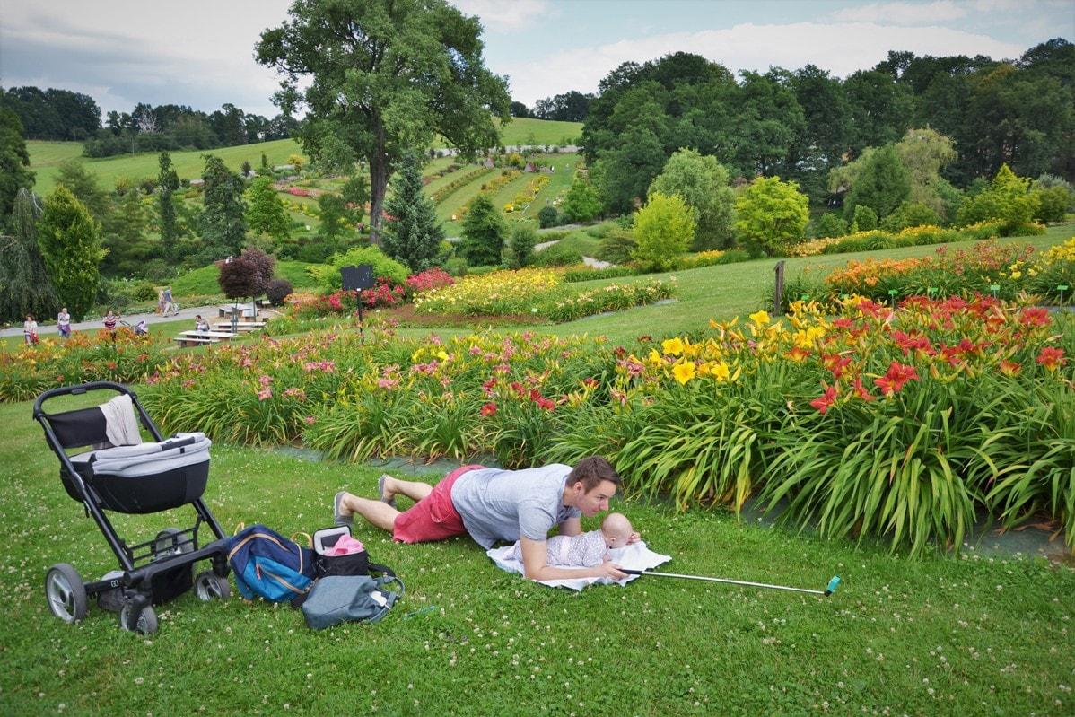 Arboretum W Wojsławicach Spacer Z Dzieckiem W Ogrodzie Jak