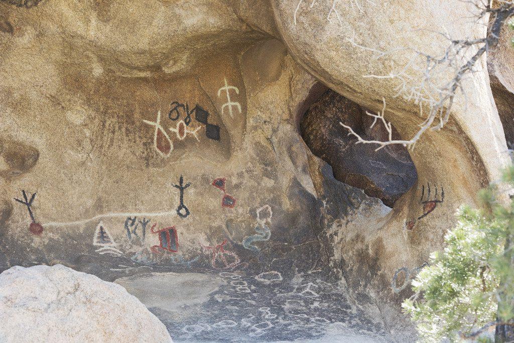 Park-Narodowy-Joshua-Tree-co-zobaczyć-NPSHannah Schwalbe (3)