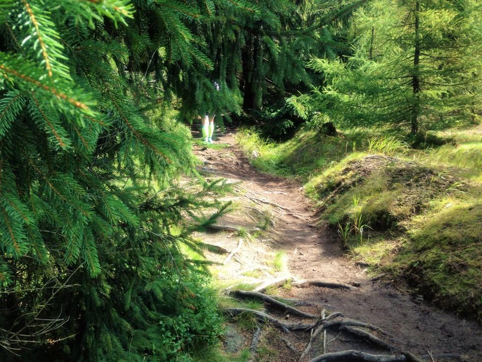 biegi-gorskie-jakuszyce-polmaraton-zbierajsie (11)