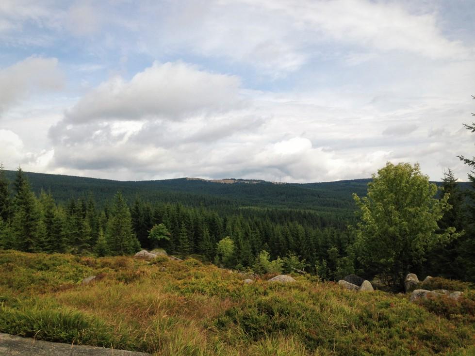 biegi-gorskie-jakuszyce-polmaraton-zbierajsie (14)