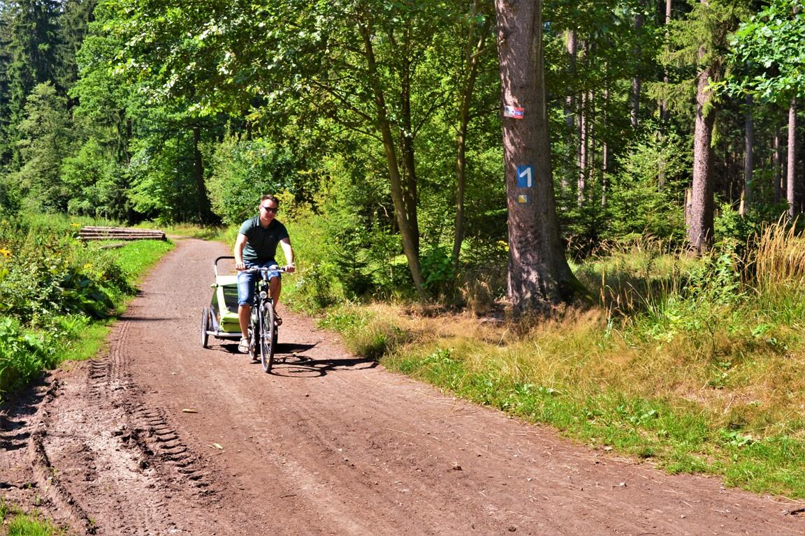 walbrzych-zamek-cisy-zbierajsie-rowery-z-dzieckiem (2)