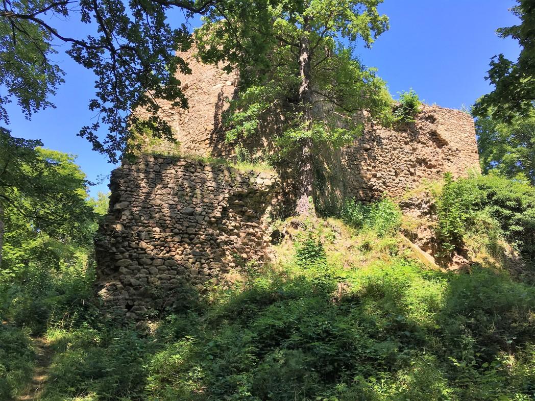 walbrzych-zamek-cisy-zbierajsie-rowery-z-dzieckiem (6)