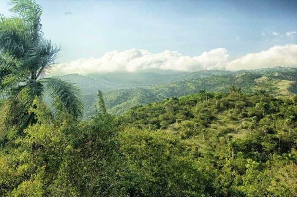 Dominikana-raj-zbierajsie (9)