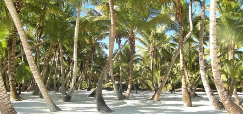 Dominikana-raj-zbierajsie_848x400