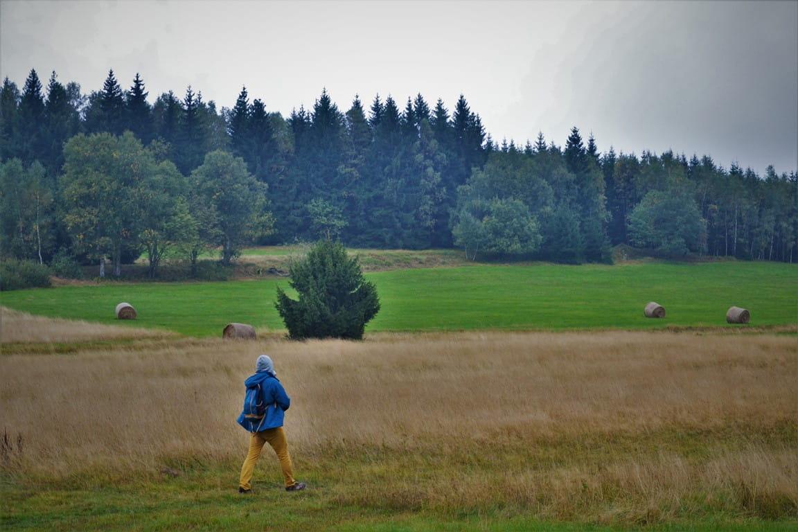gory-stolowe-schronisko-pasterka-zbierajsie (13)