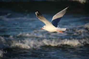 4 powody, dla których wyjazd nad morze po sezonie jest głupim pomysłem