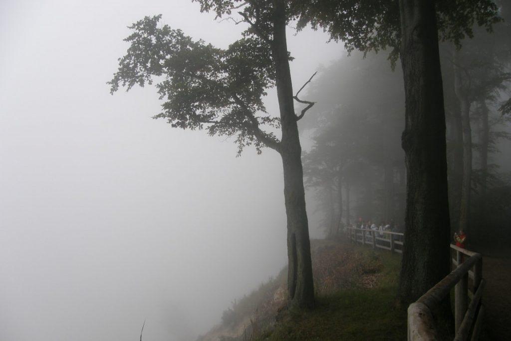 mgła nad morzem
