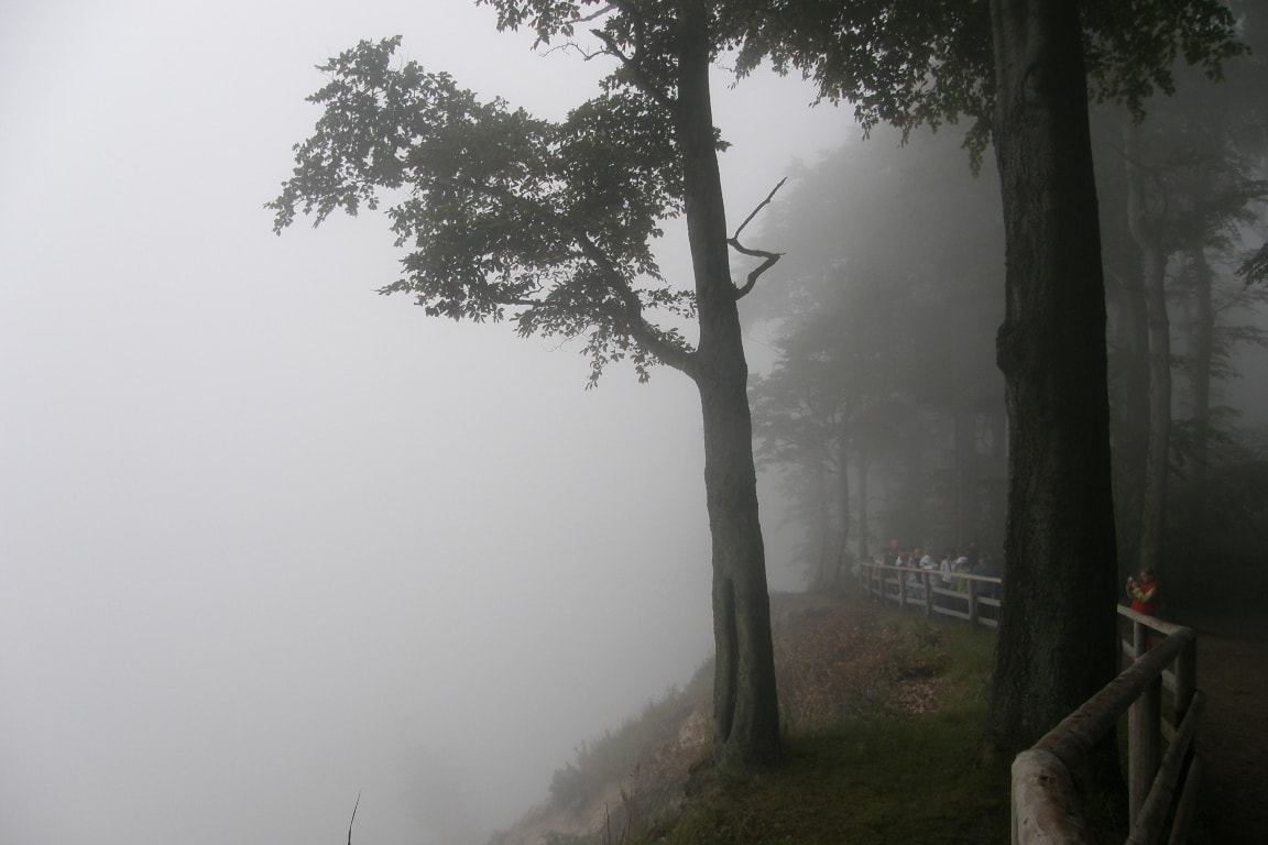 mgła nadmorzem