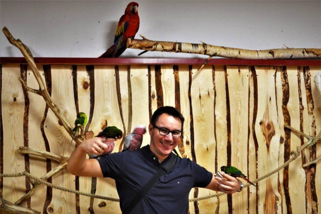 papugarnia-oborniki-slaskie-zbierajsie (9)