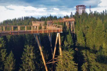 Ścieżka w Koronach Drzew Bachledka w Tatrach na Słowacji – to chcielibyśmy zobaczyć