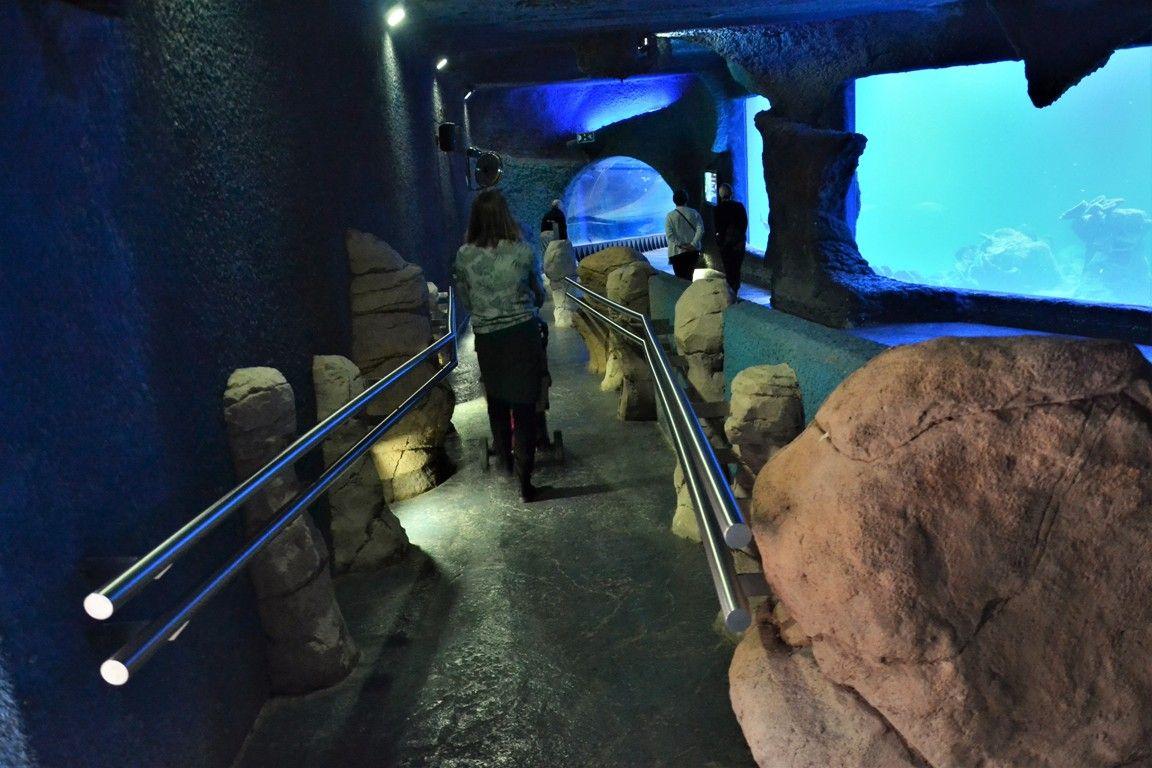 afrykarium-zoo-wroclaw-zbierajsie (5)