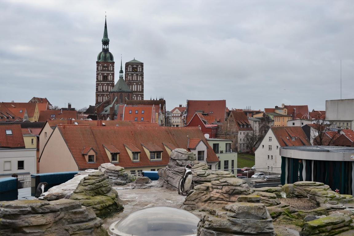 Oceanarium Stralsund (31)