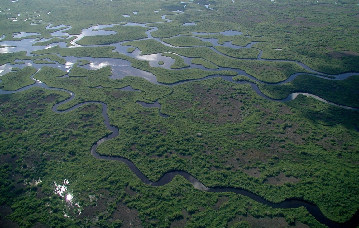 Park Narodowy Everglades na Florydzie_npsphoto_3
