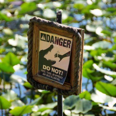 Park Narodowy Everglades na Florydzie