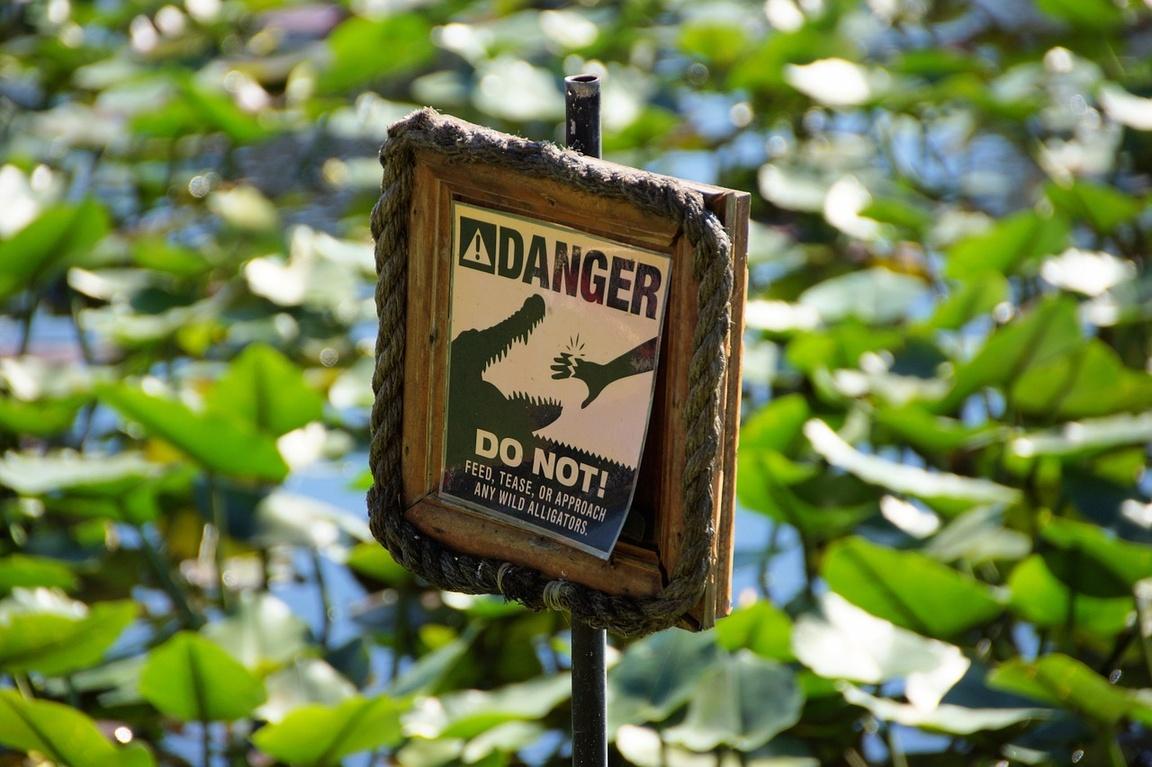 Park Narodowy Everglades na Florydzie_npsphoto_warming