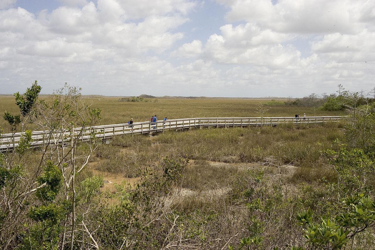 Park Narodowy_Everglades_Pa-Hay-Okee_Boardwalk_(4),_NPSPhoto_(9255273675)