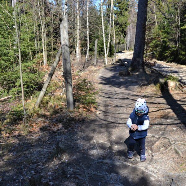 Krótkie szlaki w Karkonoszach z dzieckiem