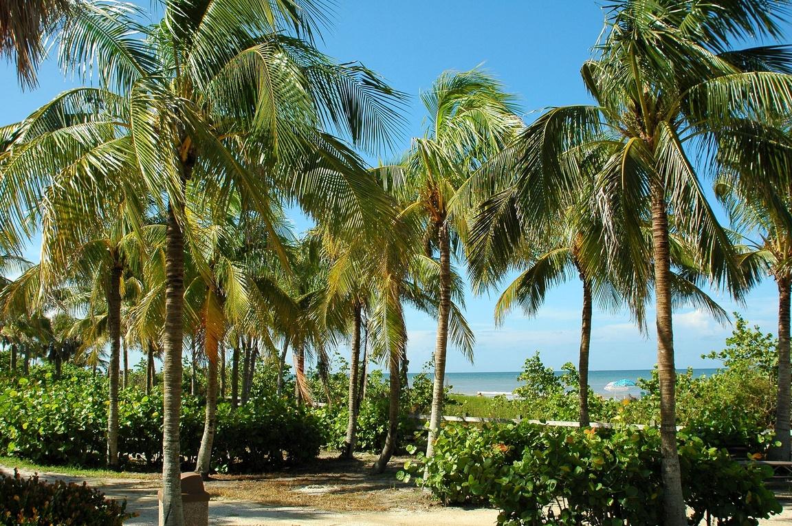 randki w ormond beach