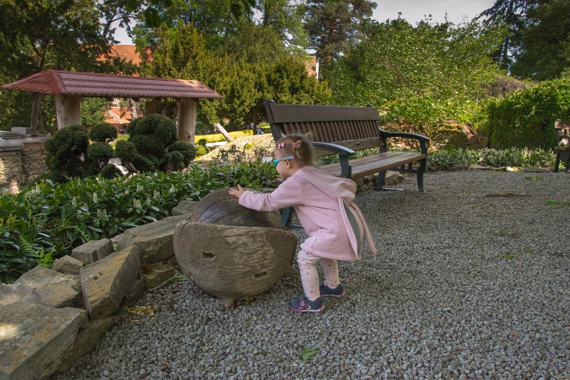 piękny ogród na Dolnym Śląsku_Arboretum w Wojsławicach_zbierajsie