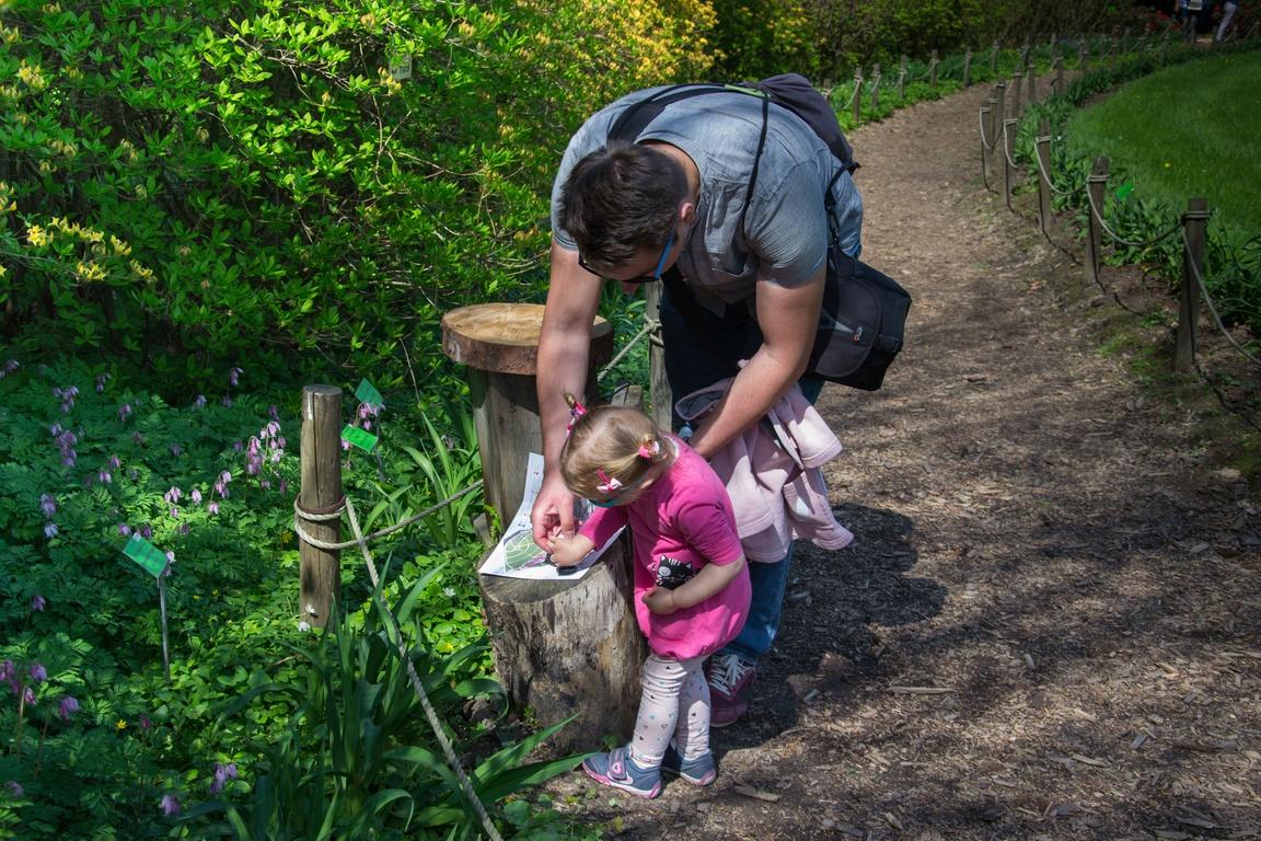 Arboretum_wojslawice_czy_warto_jechac_z_dzieckiem_zbierajsie_kryjowka5