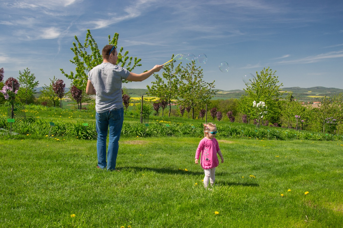 Arboretum_wojslawice_czy_warto_jechac_z_dzieckiem_zbierajsie_wzgorze_czeresniowe