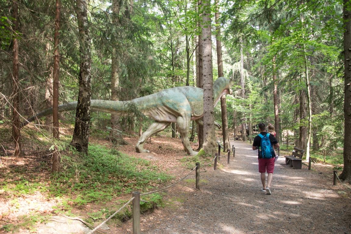 Dinopark_w_szklarskiej_porebie_atrakcje_dla_dzieci_w_karkonoszach