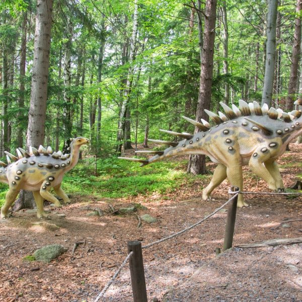 Dinopark_w_szklarskiej_porebie_atrakcje_dla_dzieci_w_karkonoszach (24)