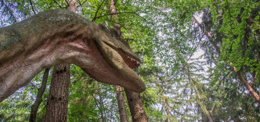 Dinopark_w_szklarskiej_porebie_atrakcje_dla_dzieci_w_karkonoszach (3)