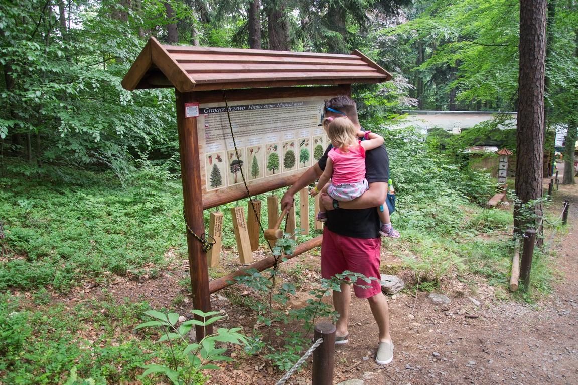edukacja_Dinopark_w_szklarskiej_porebie_atrakcje_dla_dzieci_w_karkonoszach (9)