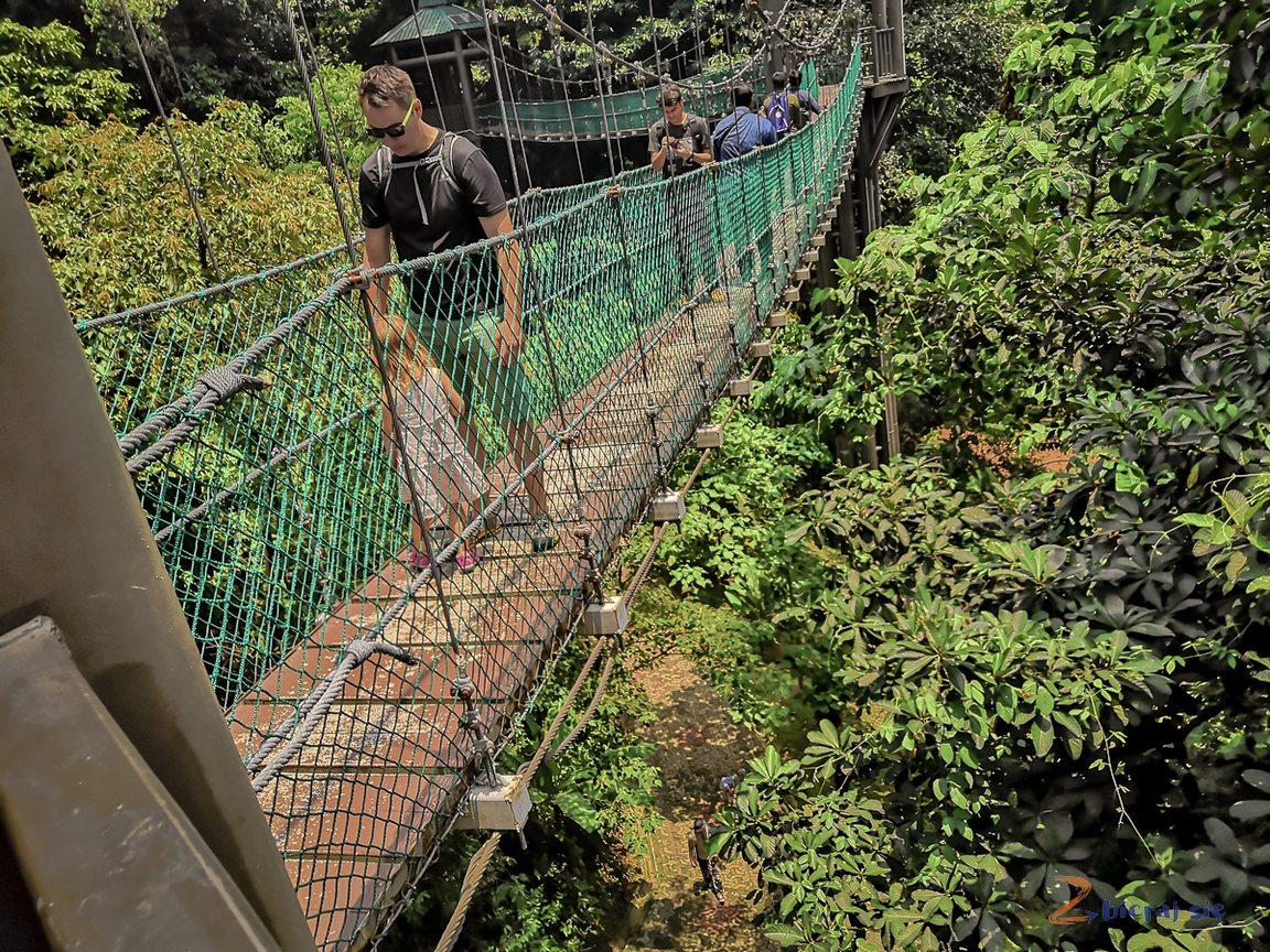 Kuala Lumpur zdziećmi _ Forest Eco Park podwieszany most wmieście
