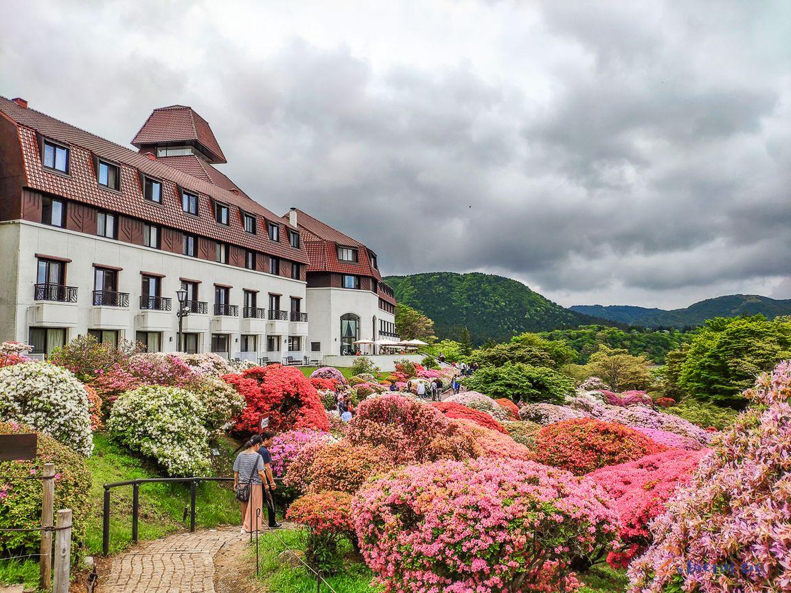 Odakyu Hotel de Yama wHakone
