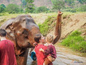 podroz_do_azji_slonie_tajlandia