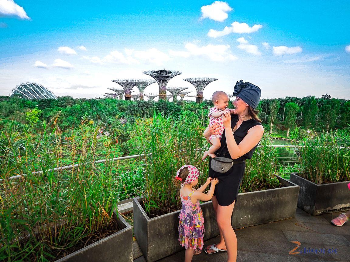 Singapur - mojewspomnienie zwizyty wmieście ogrodu