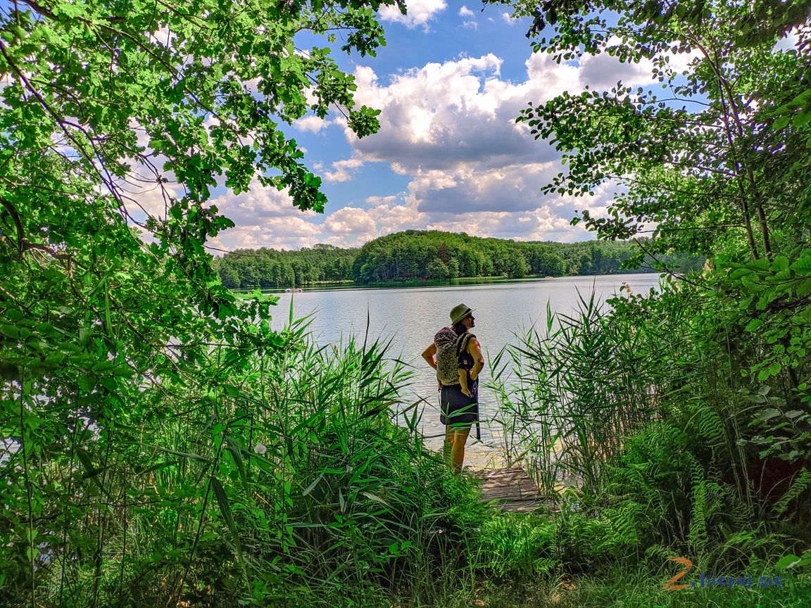 co_robic_w_lubuskim_zbierajsie_jeziora_slawa_winnica_winobranie_lasy_jezioro_lagowskie_lagow