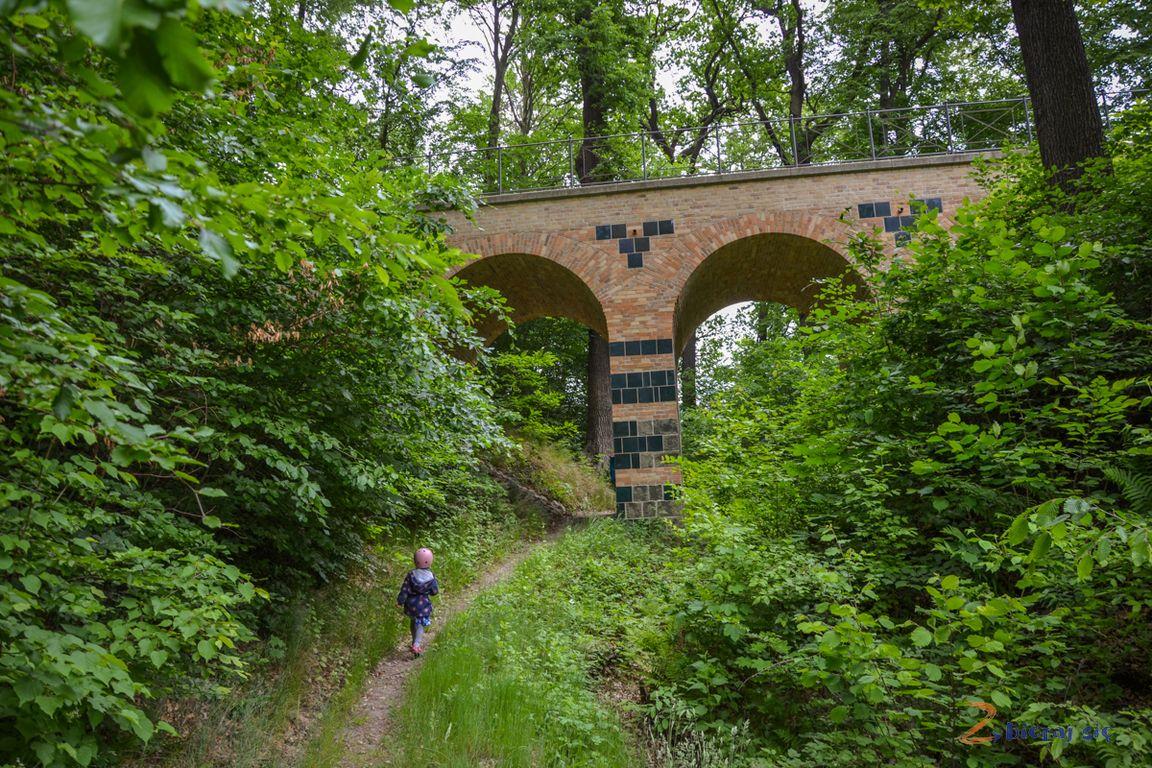 park_muzakowski_most_arkadowy_leknica_lubuskie_zbierajsie-129