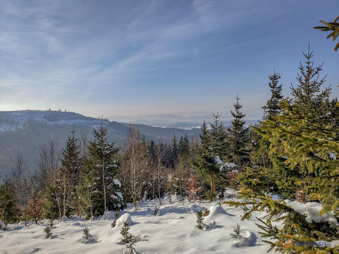 punkt widokowy Łyse Drzewo Góry Kamienne