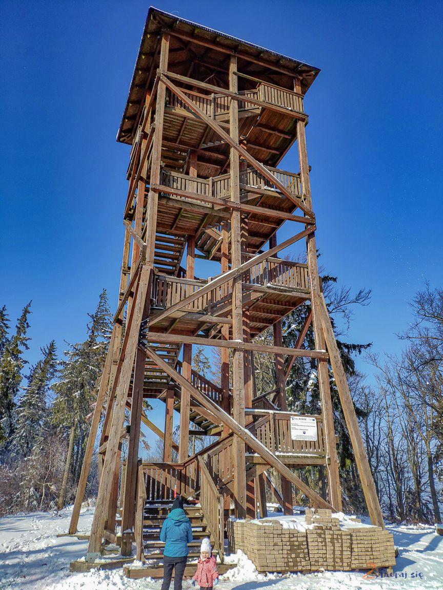 wieża widokowa naDzikowcu